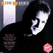 Steve Wariner: Greatest Hits