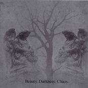 Beauty. Darkness. Chaos