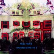 Ariel Pink's Haunted Graffiti 5: House Arrest