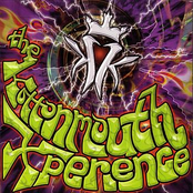 The Kottonmouth Xperience