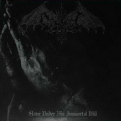 Slave Under His Immortal Will EP