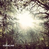 The Kodaline - EP