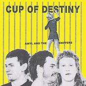 Cup of Destiny - Single
