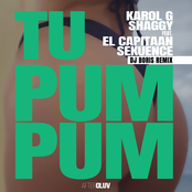 Tu Pum Pum (DJ Boris Remix)