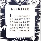 Strutter: Demo 2015