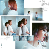 Red Diary 'Hidden Track' - Single