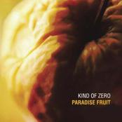 Kind Of Zero - Paradise Fruit