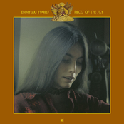 Emmylou Harris: Pieces of the Sky