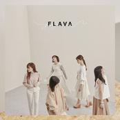 FLAVA ジャケット写真