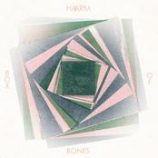 Box of Bones - Single