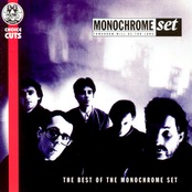 The Monochrome Set: Tomorrow Will Be Too Long