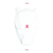 tru. (Deluxe Edition)