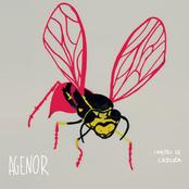 Agenor - As Canções de Cazuza