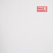 Beach Fossils: Down the Line