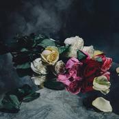 New Haze - EP