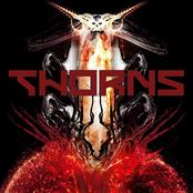 Thorns