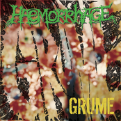 Haemorrhage: Grume