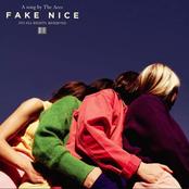 Fake Nice - Single