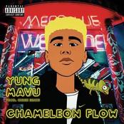 Chameleon Flow