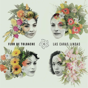 Flor De Toloache: Las Caras Lindas