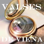 Johann Strauss Orchestra: Valses de Viena