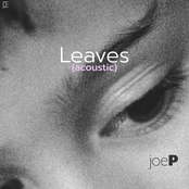 Leaves (Acoustic)