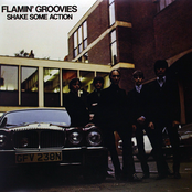 Flamin Groovies: Shake Some Action