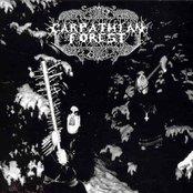 Carpathian Forest c2ce184071e14def94bb0f5aca280c40
