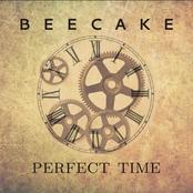 Perfect Time (Radio Edit)