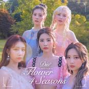 Flower 4 Seasons