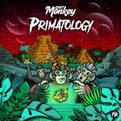 Dirt Monkey: Primatology