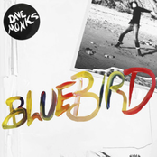 Dave Monks: Bluebird