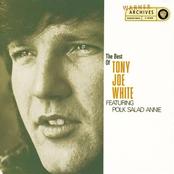 The Best of Tony Joe White (feat. Polk Salad Annie)