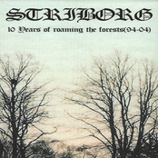 10 Years Of Roaming The Forests (94-04)