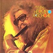 A Musica Livre De Hermeto Pascoal