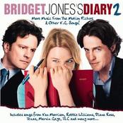 Bridget Jones's Diary, Vol. 2