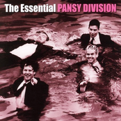 Pansy Division: The Essential Pansy Division
