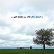 Eleventh Dream Day - Since Grazed Artwork