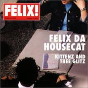 Felix Da Housecat: Kittenz and Thee Glitz
