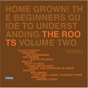 Home Grown! The Beginners Guide To Understanding The Roots Volume 2