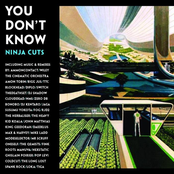 You Don't Know - Ninja Cuts