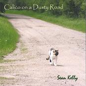 Sean Kelly: Calico on a Dusty Road