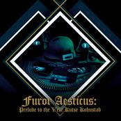Furor Aesticus