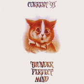 Current 93: Thunder Perfect Mind