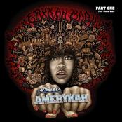 Erykah Badu: New Amerykah Part One (4th World War)