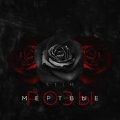 Мёртвые розы