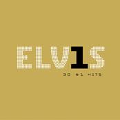 Elvis In Concert: Elvis: 30 #1 Hits