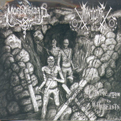 Invocation of the War Beasts Split EP