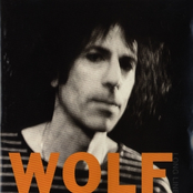 Peter Wolf: Long Line