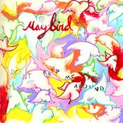 Maybird: Don't Keep Me Around